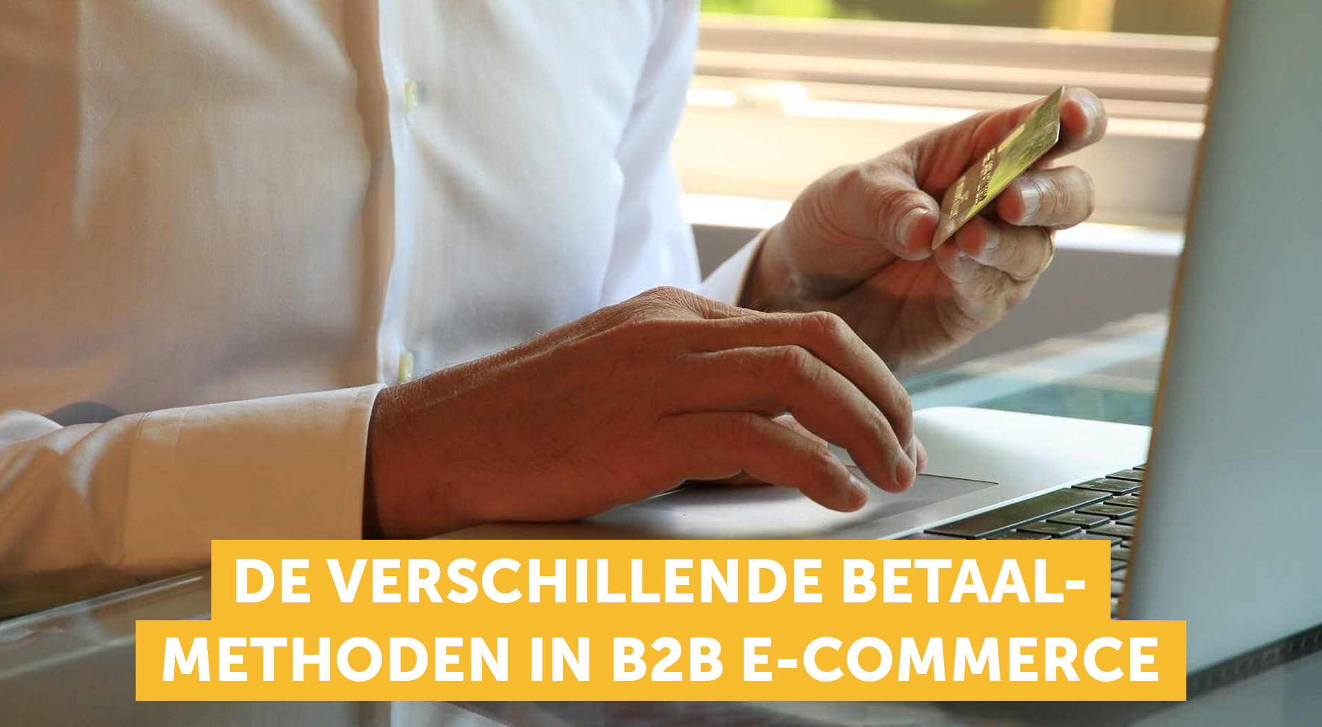 betaalmethoden voor b2b webshops